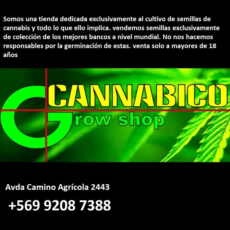 CANNABICO GROW SHOP Macul