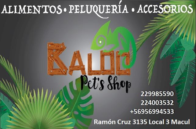 BALOO PETS SHOP Alimentos para Mascotas Macul