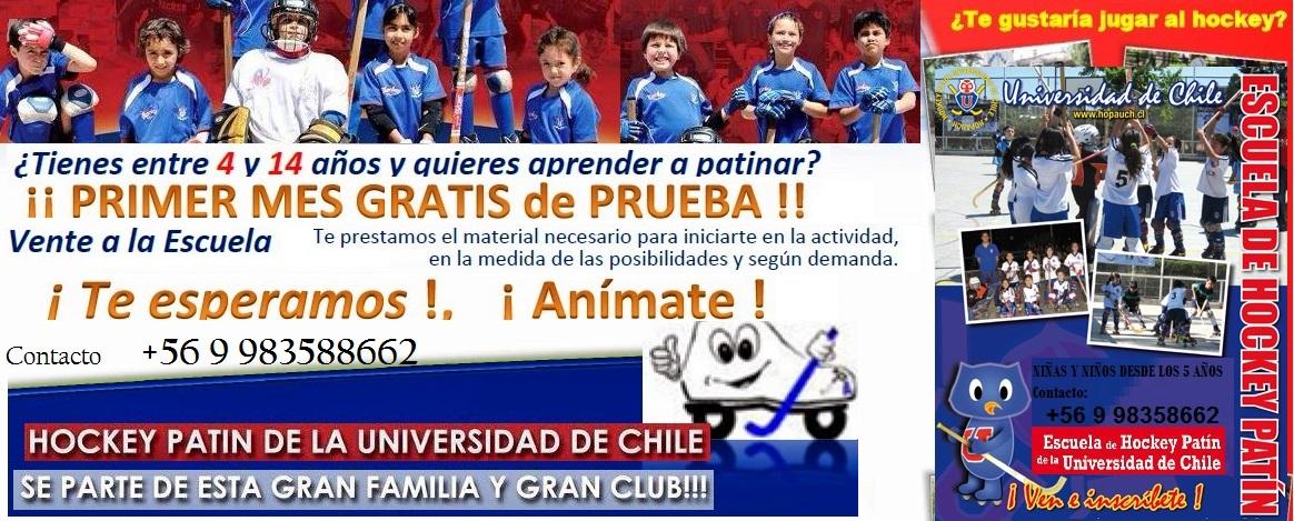 ESCUELITA HOCKEY PATIN UNIVERSIDAD DE CHILE ÑUÑOA