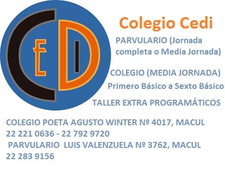 COLEGIO CEDI Macul